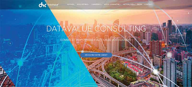DataValue Consulting www.datavalue-consulting.com
